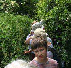 Avoiding more nettles!