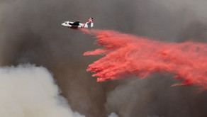 Wildfire and Volcanic Ashes