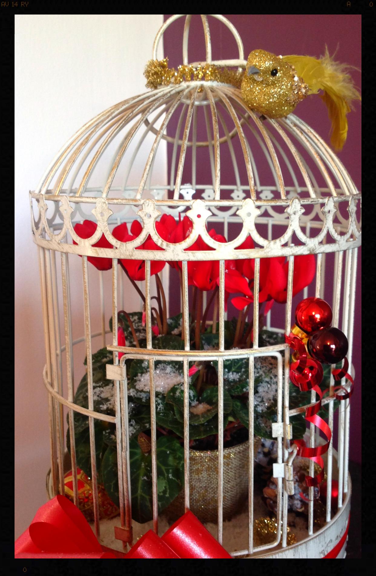 Festive birdcage
