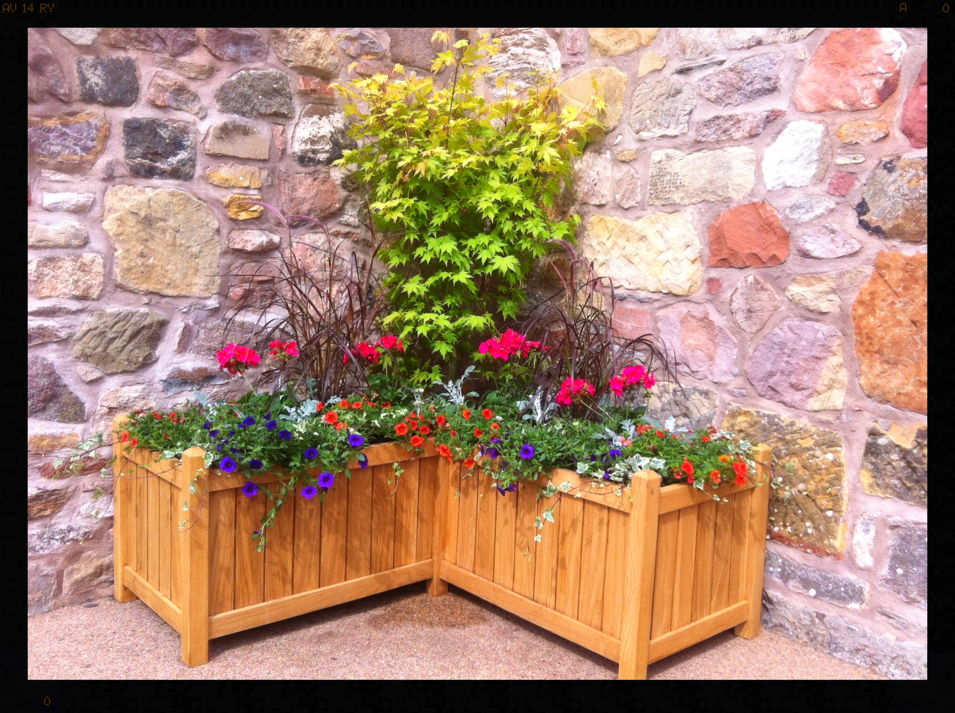 Bespoke L-shaped planter, Muirfield