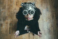 beautiful-costume-mask-2058816.jpg