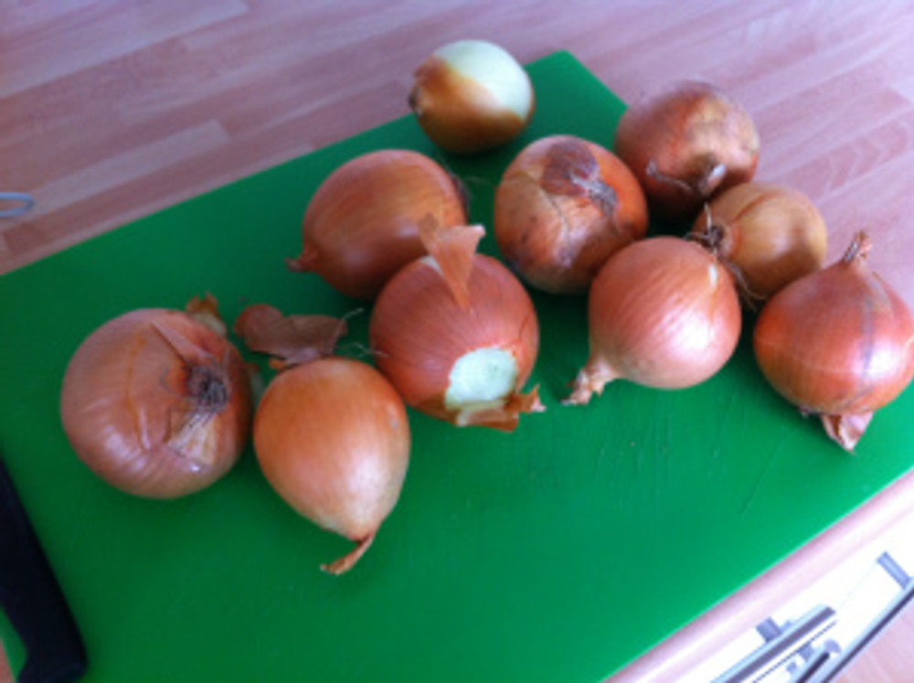 Ten large onions had to be peeled and chopped first!  I was crying like mad as they were so strong!