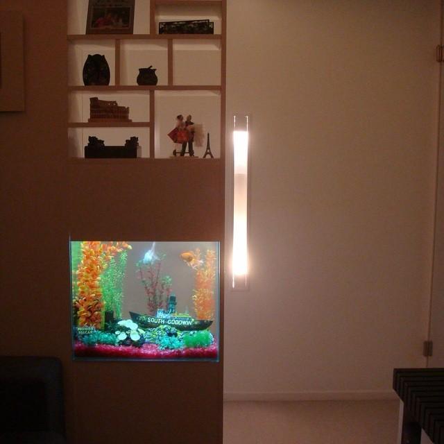 Um corredor e uma estante cheia bossa mais um projeto em parceria com _jukealmanarq _jkealman  que a