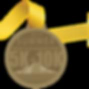 Summer Medal 2019-01.png