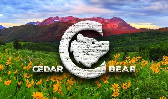 Cedar Bear