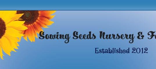Sowing Seeds Nursery