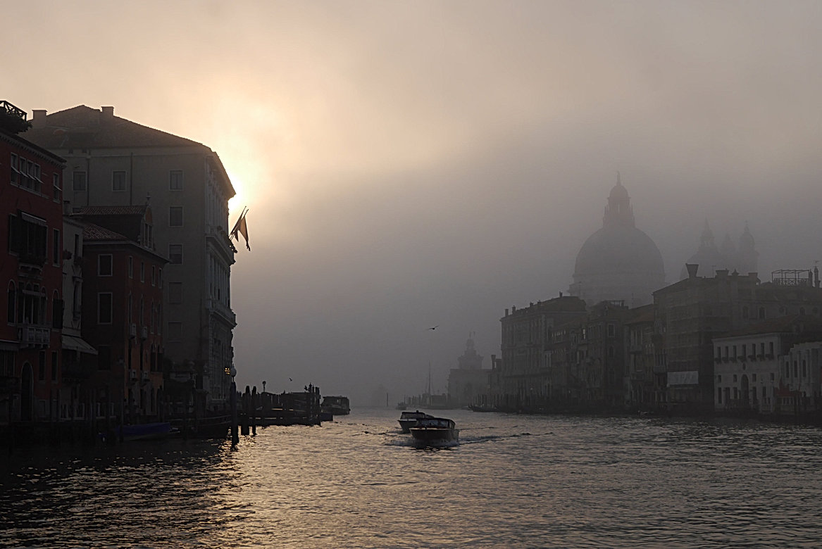 Saint-Marc-venise-ali-di-venezia-13.jpg