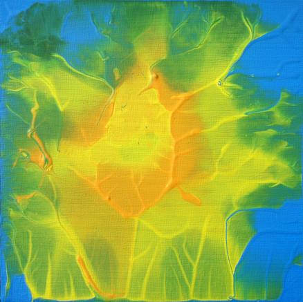 Sunflower I 2011