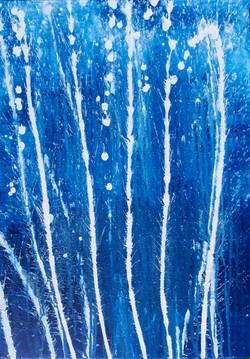 Blue Heaven 2011