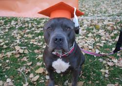 Beginner Graduation October 24, 2016