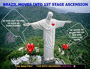 FWA BRAZIL UP PEG.jpg