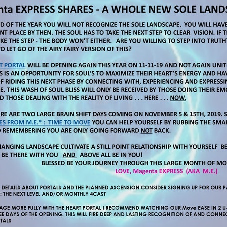 Magenta EXPRESS SHARES - A WHOLE NEW SOLE LANDSCAPE