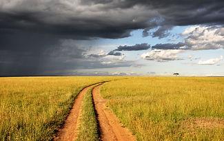 Grasland Weg Himmel Wolken.jpg