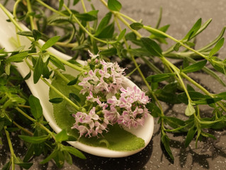 Time for Thyme -- the Benefits of the Herb and Essential Oil