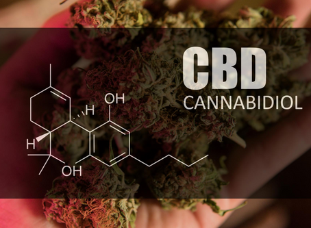 Taking CBD Orally -- What is Best? Under the Tongue or With Food?