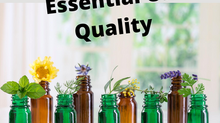 Tips for Evaluating Essential Oil Quality and Avoiding Marketing Hype