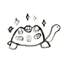 tortoise whitejpg.jpg