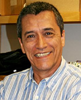Luis Vergara