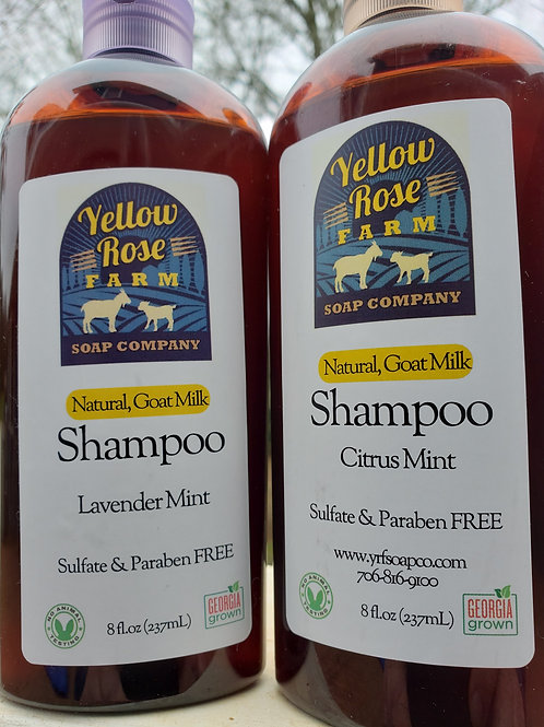 Goat Milk Shampoo