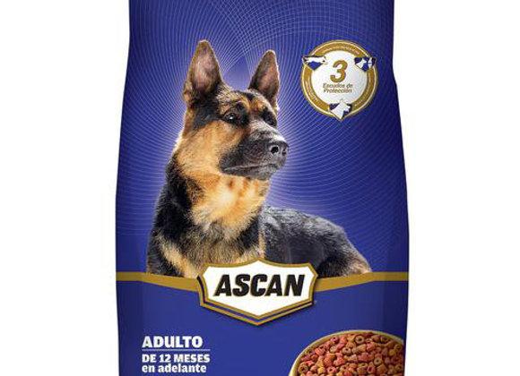 Comida para Perros Adultos 18kg Ascan