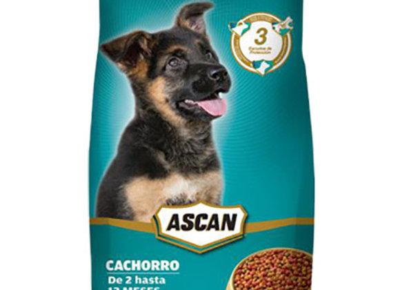 Comida para Perros Cachorro 2kg Ascan