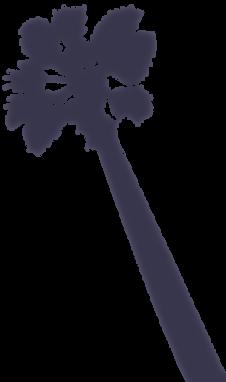 US_open_web_back_palms_6.png