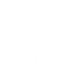 nevada_500_logo_white.png