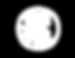RONE_tour_logo_white.png