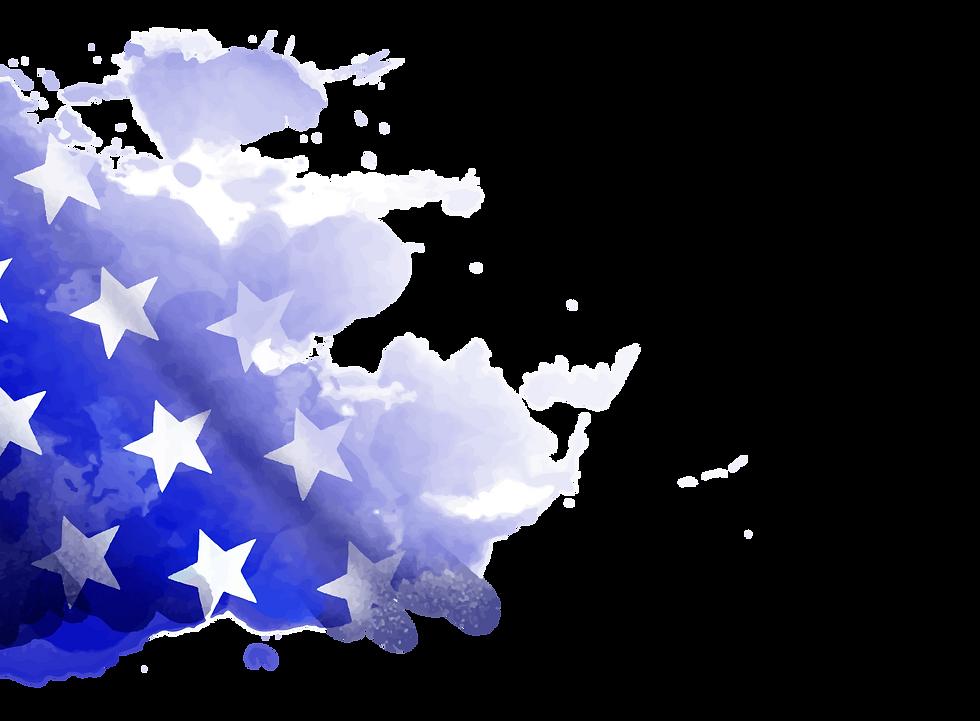US_National_2020_flag_1.png