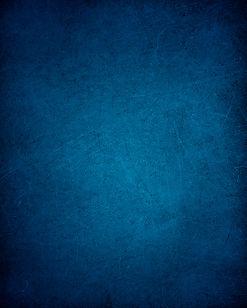 FIFG_back_blue.jpg