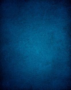 FIFG_back_blue_edited.jpg