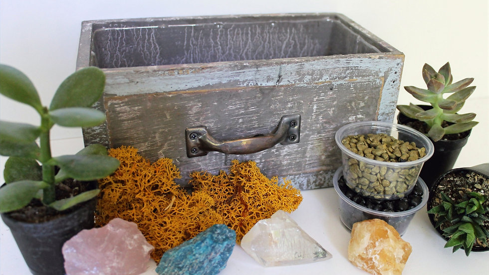 Choose Your Crystal Succulent Garden To Go