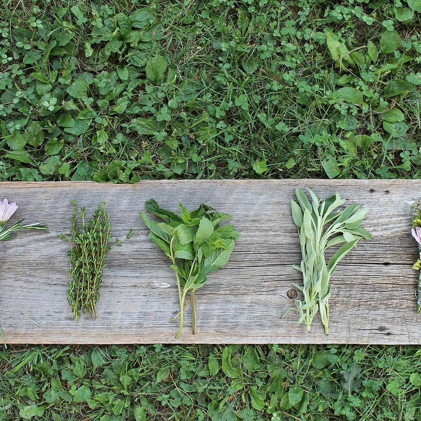 SOLD OUT: Herbal Smoke Cleansing Bundles