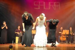 Saura (861)