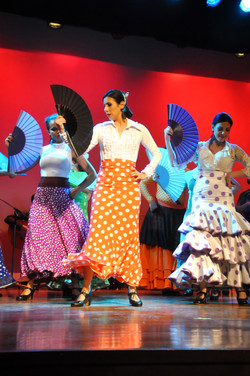 Flamenco (674)