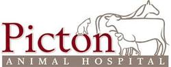Picton Animal Hospital, Picton