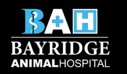 Bayridge Animal Hospital, Kingston
