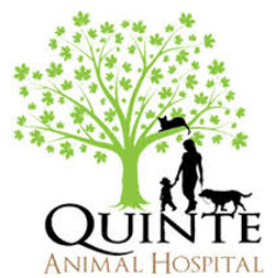 Quinte Animal Hospital, Trenton