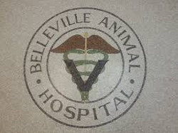 Belleville Animal Hospital, Belleville