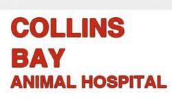 Collins Bay Animal Hospital, Kingston