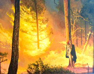 Lana and the Wildfire