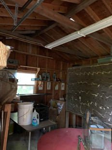 Inside Nature Room
