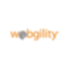 webgility automation software