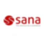 sana e-commerce software company