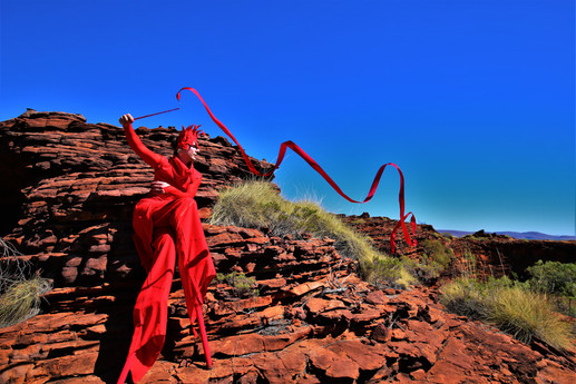 RED RIBBON - KUNUNURRA