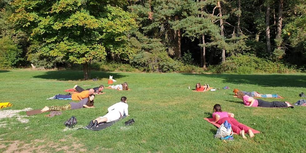 Natur-Yoga