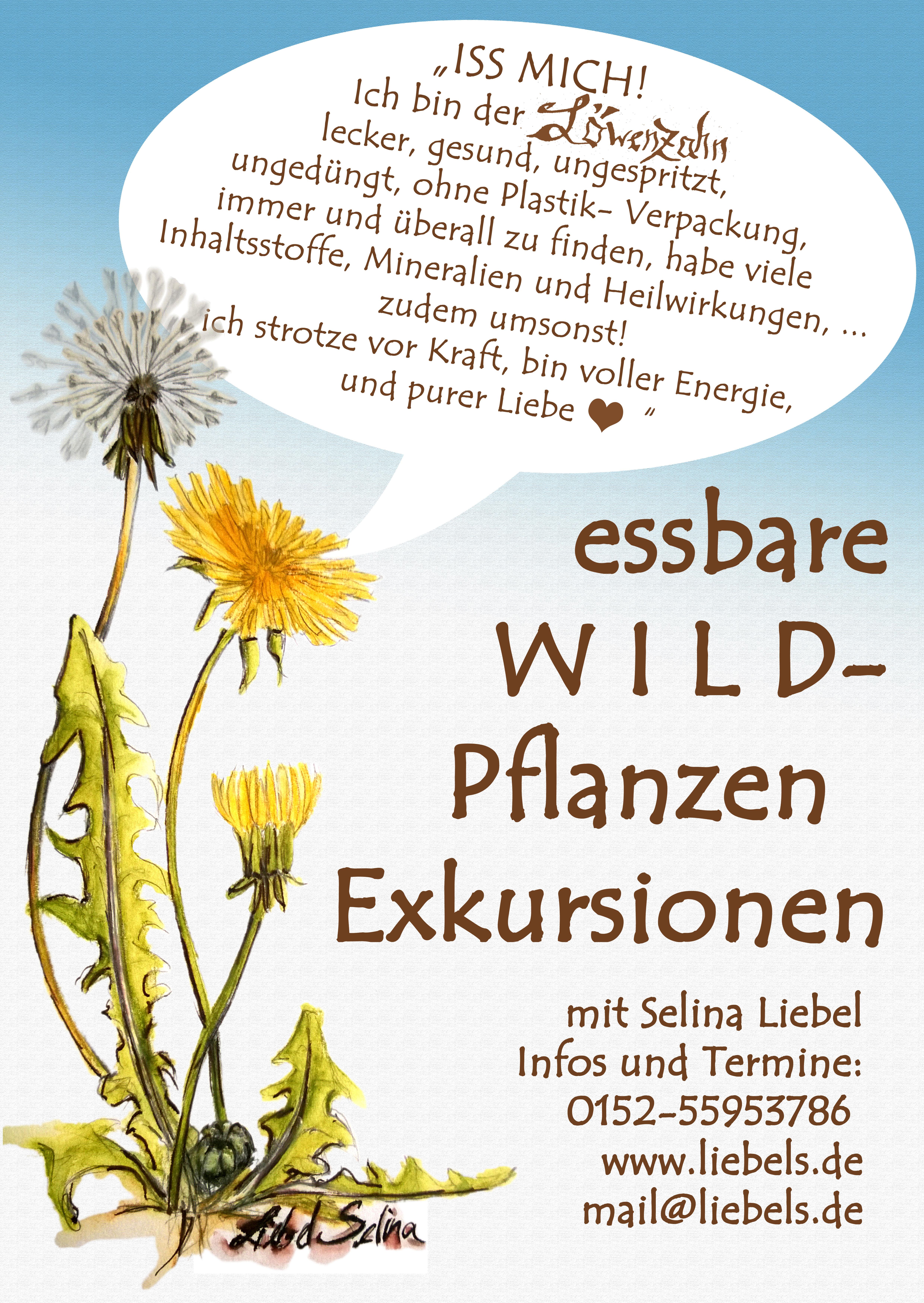 essbareWILD Pflanzen Exkursion