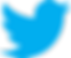 Twitter_logo_bird_transparent_png.png