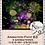 Thumbnail: Animation Pack #63