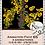 Thumbnail: Animation Pack #65